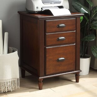 Darby Home Co Edison Park 2-Drawer Vertical Filing Cabinet