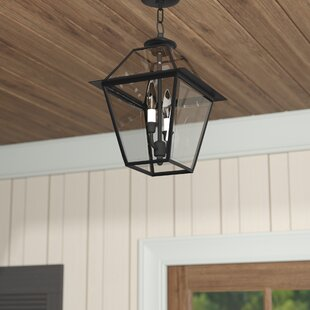 Orchard Lane 2-Light Outdoor Hanging Lantern by Three Posts