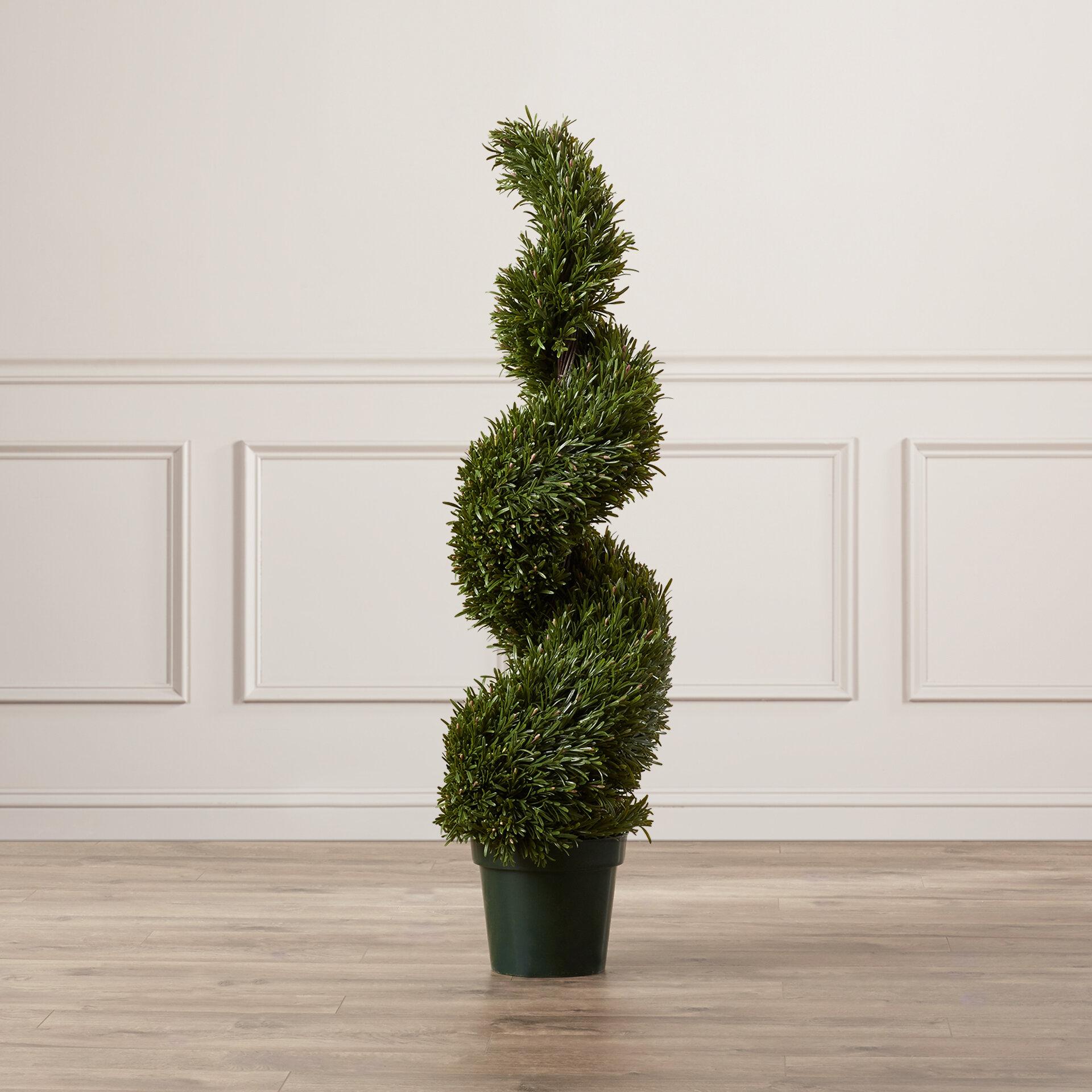 Rosemary Artificial Cedar Topiary In Pot Reviews Joss Main