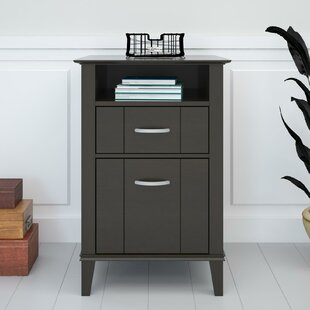 Odessa 2-Drawer Vertical Filing Cabinet by Andover Mills Spacial Price