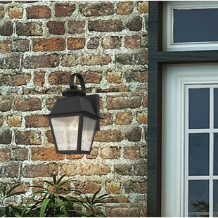 Cynda 1-Light Outdoor Wall Lantern