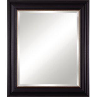 Art Effects Vanity Accent Mirror