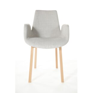Agder Armchair by Stilnovo