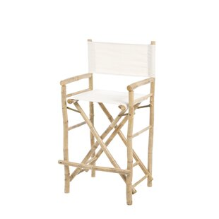 Josephine Folding Director Chair (Set of 2) by Beachcrest Home
