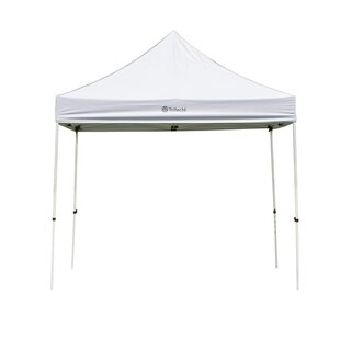 10 Ft. W x 10 Ft. D Steel Pop-up Canopy by Trifecte