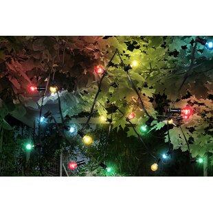 Stephens 10 Light Festoon Lights By The Seasonal Aisle