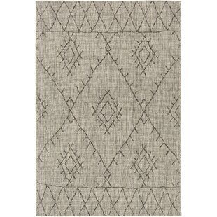 Gunter Bohemian Khaki/Brown Indoor/Outdoor Area Rug