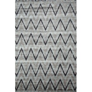 Hand Woven Silk Gray/Black Area Rug ByExquisite Rugs