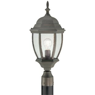 Charlton Home Brew Outdoor 1-Light Lantern Head