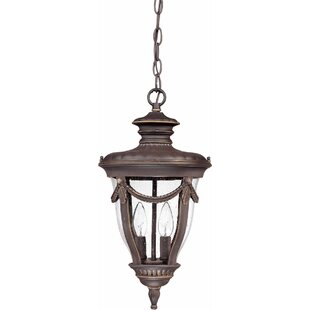 Rankin 2-Light Outdoor Hanging Lantern