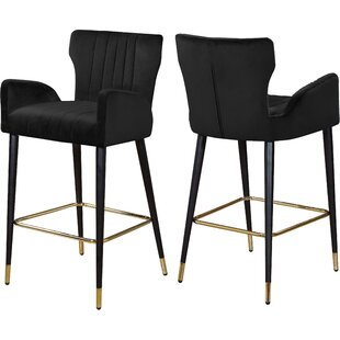Strange Velvet 28 Bar Stool (Set of 2) Everly Quinn