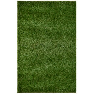 Rugs That Look Like Grass Wayfair