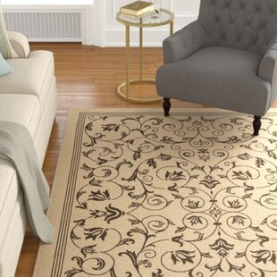 Rockbridge Brown Indoor/Outdoor Area Rug