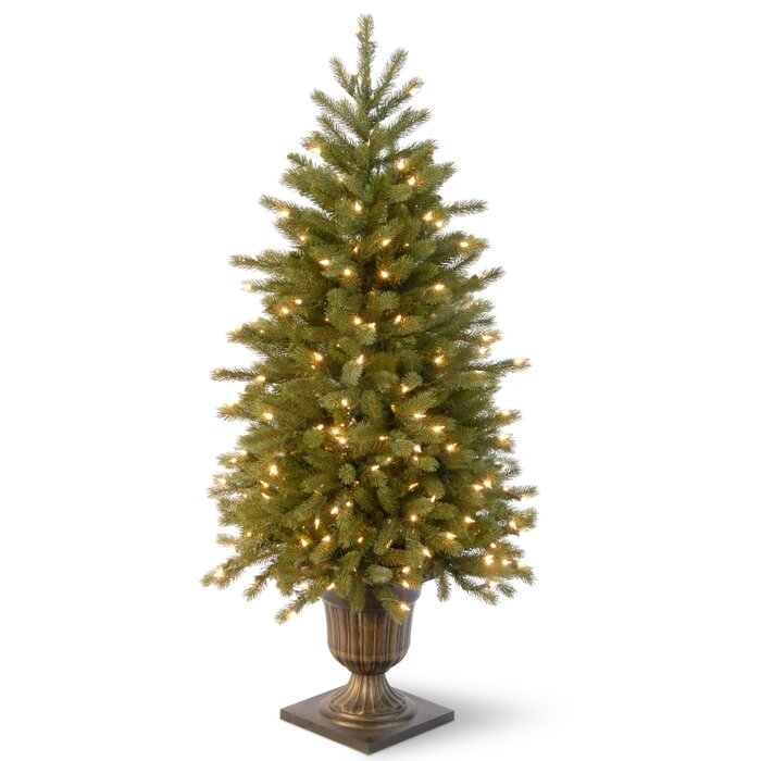 Frasier Fir Christmas Tree.Jersey Fraser Fir 4 Green Entrance Artificial Christmas Tree With 100 Pre Lit Clear Lights With Urn Base