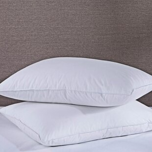 Alwyn Home Laszlo Medium Down and Feather Pillow (Set of 2)
