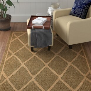 Kulas Brown Indoor/Outdoor Area Rug
