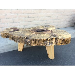Doretha Tamarind Wood Coffee Table by Bloomsbury Market Best