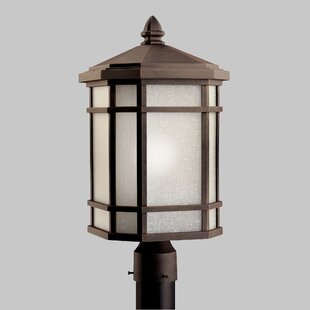 Loon Peak Robles Outdoor 1-Light Lantern Head