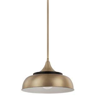 George Oliver 1-Light Dome Pendant