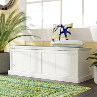 Lucious Storage Accent Trunk By Brambly Cottage