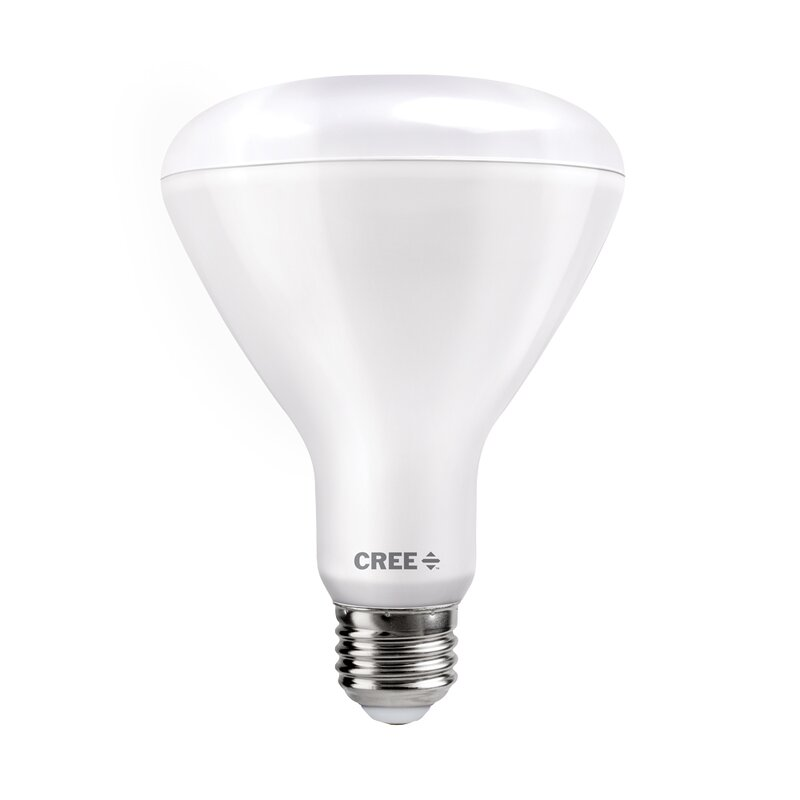 Br30 Led Dimmable Light Bulb