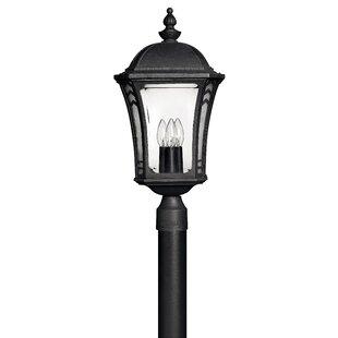Alcott Hill Keltner Outdoor 3-Light Lantern Head