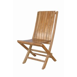 Andrew Folding Patio Dining Chair with Cushion (Set of 2)