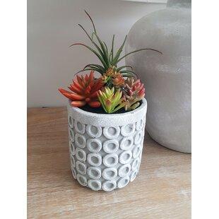 4 Artificial Succulent In Planter Set Image
