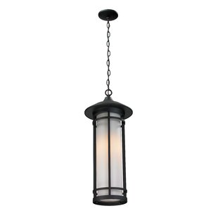 McKew 1-Light Outdoor Pendant