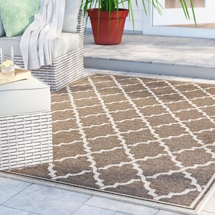 Barrow Brown Indoor/Outdoor Area Rug
