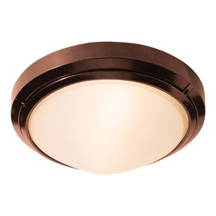 Ivy Bronx Decoteau 1-Light Outdoor Flush Mount