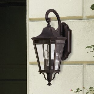 Darby Home Co Chesterhill 1-Light Outdoor Wall Lantern