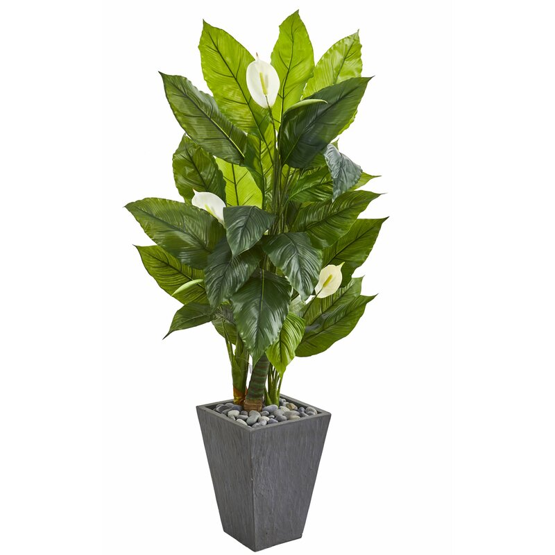 """charlton home® 63"""" artificial banana leaf plant in planter"""