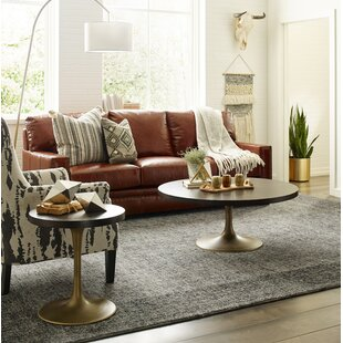 Austin 2 Piece Coffee Table Set