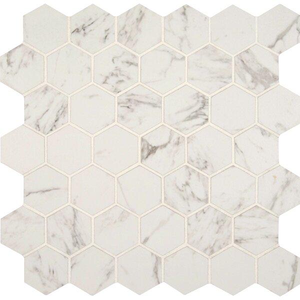 Msi Carrara 2 X Hexagon Porcelain Mosaic Tile In Matte Reviews Wayfair