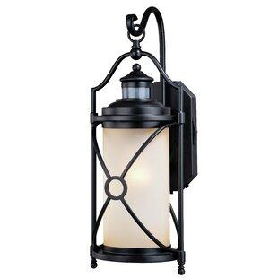 Helvey Dualux Outdoor Wall Lantern by Alcott Hill