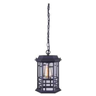 Coupon Barnes 1-Light Outdoor Hanging Lantern By Gracie Oaks