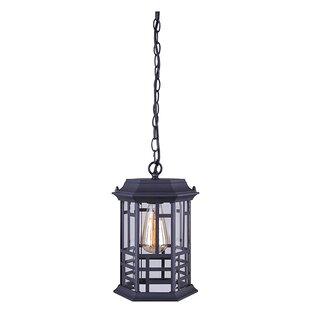 Best Reviews Barnes 1-Light Outdoor Hanging Lantern By Gracie Oaks