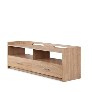 Brayden Studio Baney TV Stand for TVs up to 60