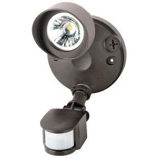 Morris Products LED Spot Light with Motio..