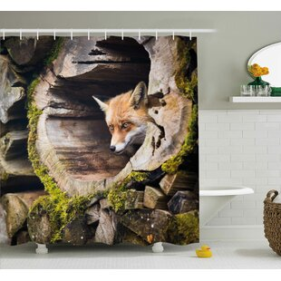 Animal Nature Wild Fox Forest Single Shower Curtain