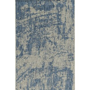 Harms Blue Indoor/Outdoor Area Rug