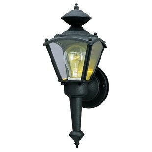 Mueller 1-Light Outdoor Sconce