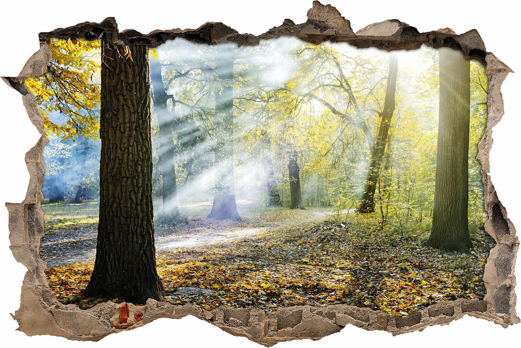 Pixxprint Wandtattoo Sonnenstrahlen Auf Waldlichtung Wayfair De