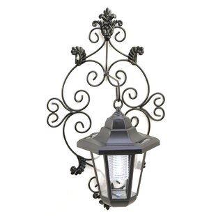 Trellis 1-Light Outdoor Wall Lantern by Zingz & Thingz