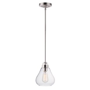 Breakwater Bay Kimsey 1-Light Teardrop Pe..