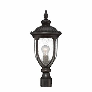 Read Reviews Angie Outdoor 1-Light Lantern Head By Fleur De Lis Living