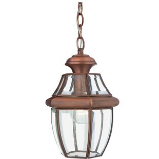Wexford 1 Light Outdoor Hanging Lantern By Sol 72 Outdoor