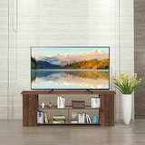 Bronach TV Stand for TVs up to 50 by Latitude Run®
