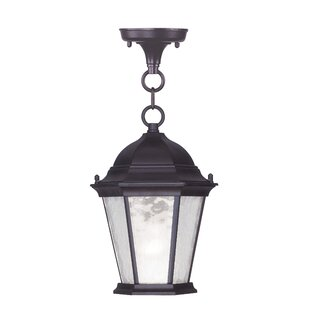 Darby Home Co Busse Hanging Lantern